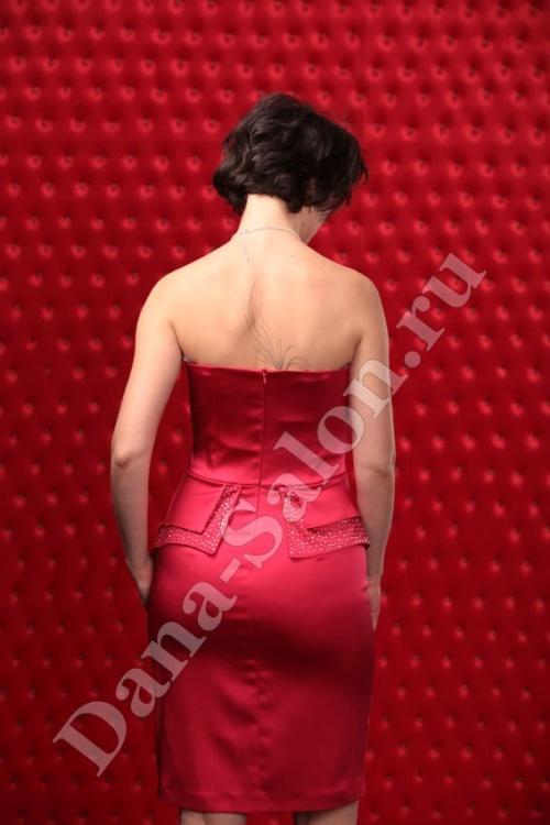 Женские платья Платье  Модель T 247